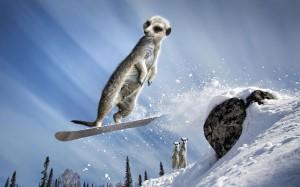 january-snowboard_2421627k