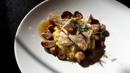 trout-with-porcini